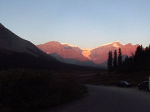 Columbia Icefields from Wilcox Creek